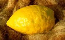 Downtown Crime Report: Our Etrog Was Stolen